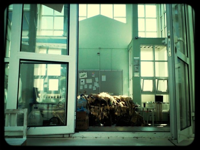 Лаборатория Имплицитного Пупария ЦНИИПИПС Darwinzoozoo сейчас: