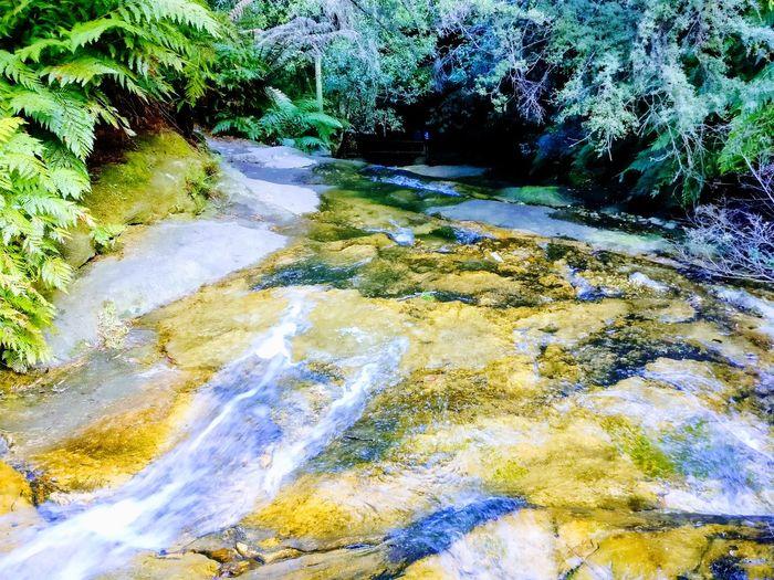 Waterfall, mountain Bluemountain, Water Walterfall Mountain Bushwalk Sydney Bushwalk Blue Mountain