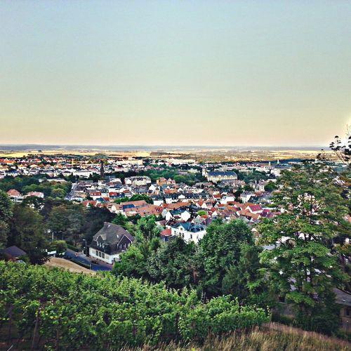 Johannisberg Landscape Landscape_Collection Places
