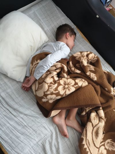 Bed Bedroom Child Childhood Comfortable Couple - Relationship Domestic Room Eyes Closed  Furniture High Angle View Indoors  Innocence Lying Down Males  Men Pillow Relaxation Resting Sleeping Teddy Bear Toy