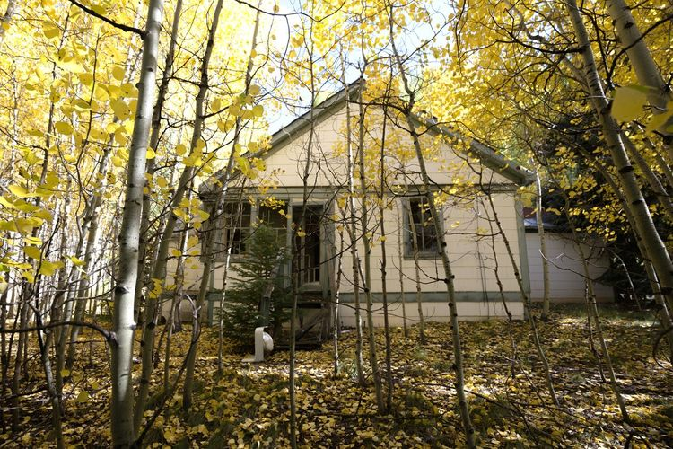 Abandoned Gilman Ghost Town Gilman Colorado Fall Leaves Fall House Mining Town Autumn