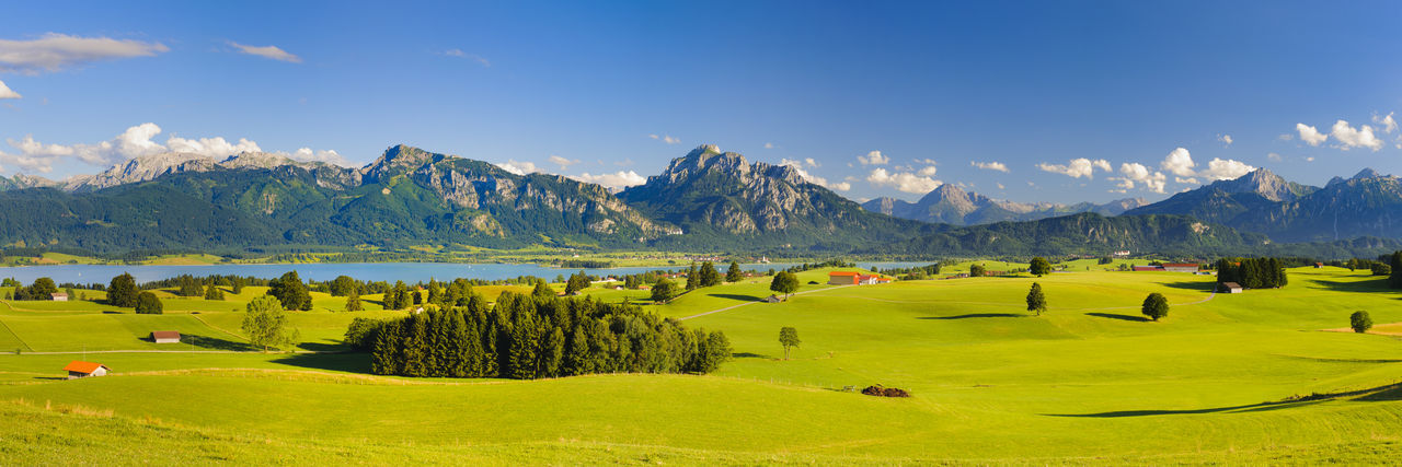 panoramic rural landscape in region Allgäu, Bavaria, Germany, with alps mountains and lake Forggensee nearby city Füssen Allgäu Bavaria Panorama Panoramic Rural Scenic Alps Beauty In Nature Forggensee Füssen Germany Lake Landscape Meadow Mountain Mountain Range Nature No People Outdoors Panoramic Landscape Scene Scenery Scenic Landscapes Tranquil Scene Tranquility