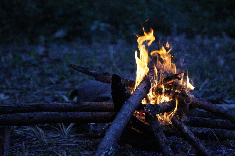Firewood Flames & Fire