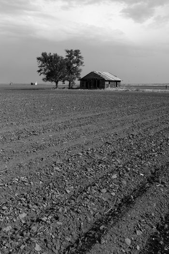 Abandoned farmhouse in a plowed field Drought Isolated Texas Panhandle Texas Plains Texas Skies Abandoned Farmhouse Agriculture Blackandwhite Cloud - Sky Cultivated Land Dry Land Farming Field Land Lonesome No People Plowed Field Rural Scene Sky Snyder TX