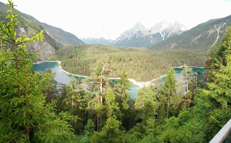 Mountain Nature Outdoors Mountain Range Scenics Beauty In Nature No People Plant Tree Day Landscape Forest Water Sky