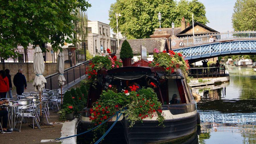 Little Venice,