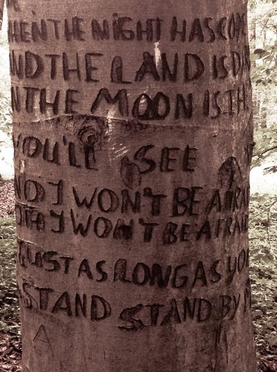 Text Communication Day No People Outdoors Alphabet Close-up Stand By Me Songtext Tree Carved In Tree