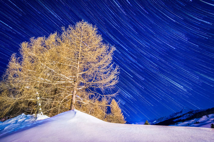 StarTrail Trees Landscape Skyscape Snow ❄ Snow Galaxy Star - Space Snow Astronomy Cold Temperature Space Winter Blue Milky Way Star Trail Star Starry Cold Constellation Snowflake White Snow Covered