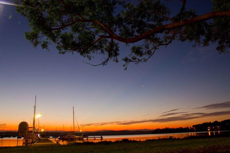 Sunset Picnic Colourful Colours Colourfulsunset Stars Big Tree Long Exposure