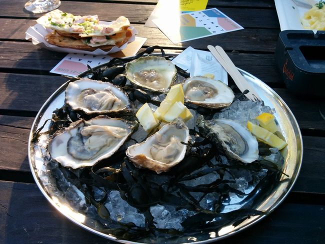 Food Freshness Meal Mussles Oyster  Oysters Plate Seafood Seafood Served Temptation