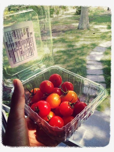 Eat More Fruit - cherry tomatoes picked from a neighbors house.