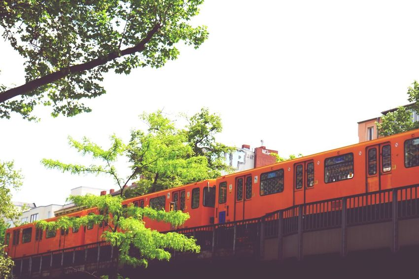 Capture Berlin Tree Built Structure Building Exterior Architecture Outdoors Rail Transportation Day Clear Sky Nature No People Sky