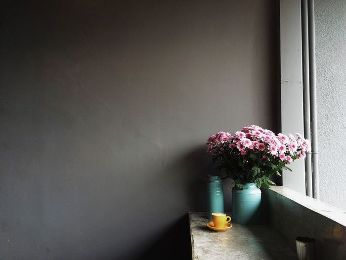 Potted plant in vase