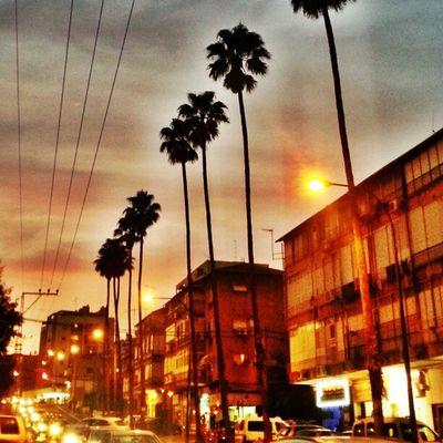 Statigram Street Sunset_lovers Sunset world walk webstagram way