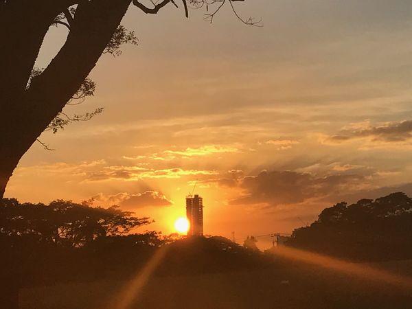 EyeEm Best Shots EyeEm Nature Lover Relaxing Sunset Sunset Sillouette Looking At Camera Nature_collection By The Trees. Garden Of Beauty....by Rowena Perez Quezon City Building Travelling With Family