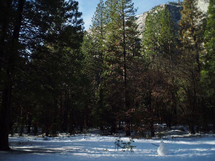 Happy Snowman Winter The Minimals (less Edit Juxt Photography)