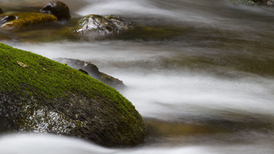 Beauty In Nature Blurred Motion Day Flowing Flowing Water Forest Italy Land Long Exposure Motion Mountain Nature No People Outdoors Plant Power In Nature Rock Rock - Object Scenics - Nature Sea Solid Sport Stream - Flowing Water Water Wood - Material