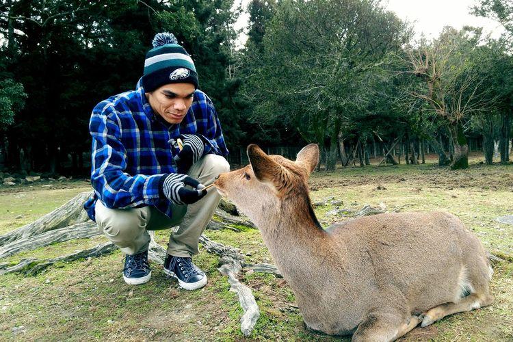 Feeding the Deer Nara,Japan Deer Deer Moments Deer Park Deer ♥♥ Philadelphia Eagles Go Eagles