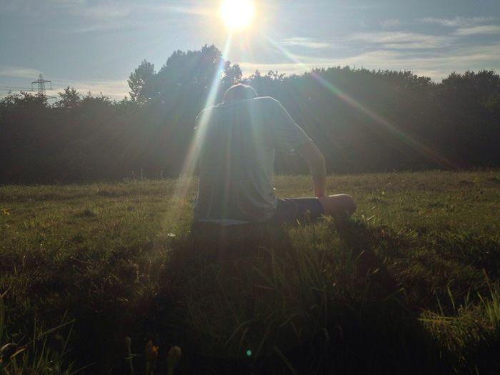 Sunbeam Grass Lens Flare Sun