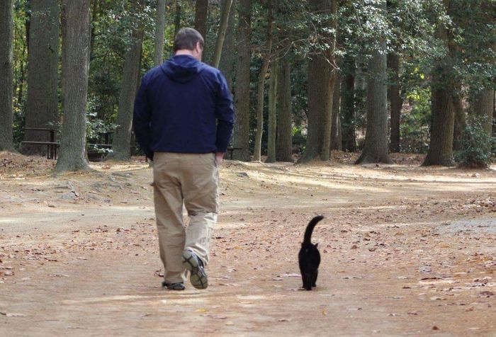 Me and my buddy Salem taking a walk Only Men One Man Only Tree One Animal One Person Rear View Full Length Adults Only Leisure Activity Outdoors Men Day People Adult Mammal Pet Portraits