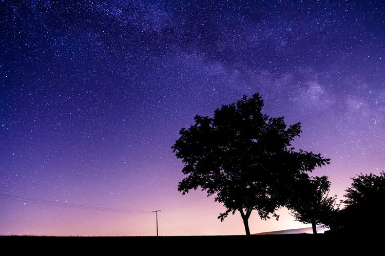 Milky way over an apple tree 21mm Galaxy Midnight Sun Serenity Silhouette Tranquility Astronomy Astrophotography Infinity Light Polution Midnight Milky Way Nightsky Purple Sky Space And Astronomy Stars Zeiss