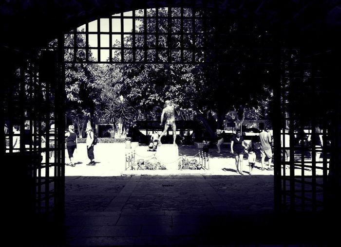 Live Feed.. Streetphotography Blackandwhite ..anonymity..