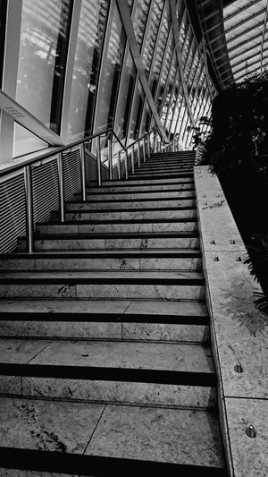 Staircase Steps Steps And Staircases Architecture Railing Built Structure No People Day Building Exterior City Sky Skygarden Black And White