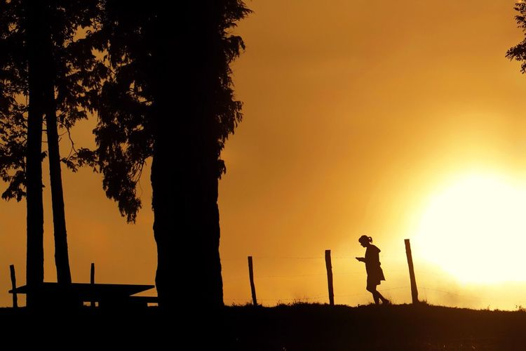Sunset Silhouette Sun Tree Outdoors Real People One Person Nature Sky People Day Nature Nature_collection Landscape Landscape_Collection Sunset_collection Sunlight Streetphotography Street Travel Traveling Urban Landscape Beauty In Nature Walk Dark