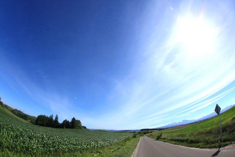 Blue Sky Nature
