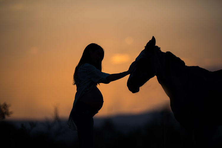 Silhouette pregnant women touching horse against sky during sunset