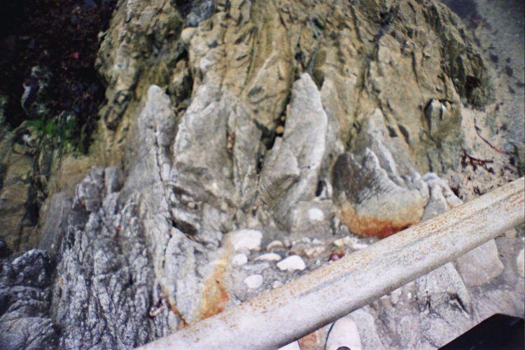 Koduckgirl Carmel Highlands Portra800 La Sardina Film Rock