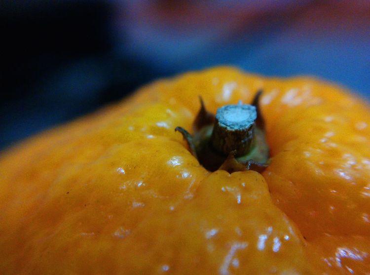 Mandarin Orange оранжевый мандарин