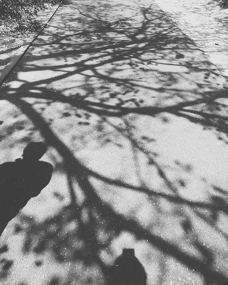 Shadow follow you everywhere Black Igersbnw Iiframe Bwoftheday Cloudporn Noiretblanc Noirlovers Bwbeauty Cloudscape Blancinegre Monochrome Bw_lover Shadow Blancoynegro Irox_bw Art Bw_society Nero Blackandwhite Ic_bw_bw Bwstyles_gf Bandw Beautiful Perfect Ilobsterit noir shadow mono shadowhunters blackandwhite