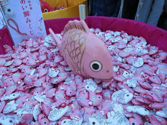 あい鯛みくじ  ピンクなので、女子に人気! おみくじ 氷川神社 鯛
