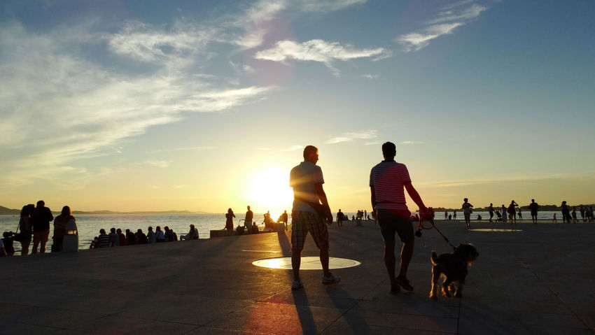 Summer In The City Adult Beach Canine Crowd Dog Group Of People Land Large Group Of People Leisure Activity Lifestyles Men Nature One Animal Outdoors Real People Sea Sky Sunset Water Women