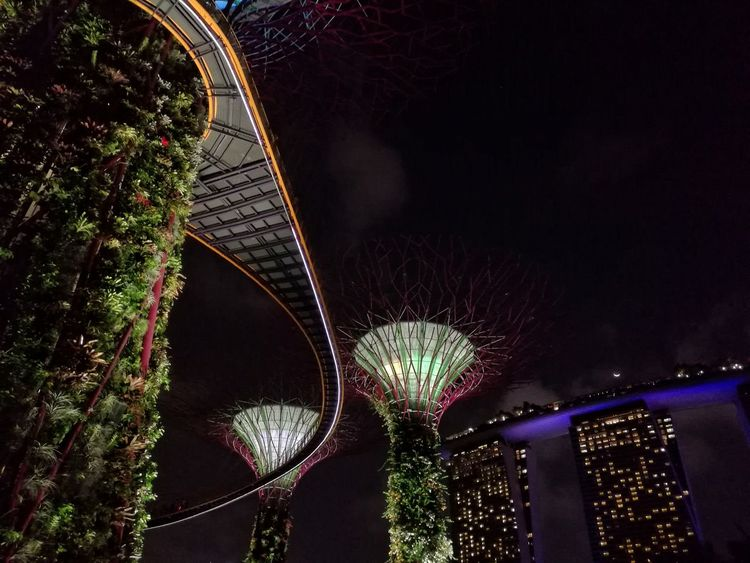 Cities At Night Eyeem Awards 2016 Cities At Night Citiesworldwide Cities By Night Cities Worldwide Citiesskylines Gardens By The Bay Singapore Singapore Marina Bay Sands The Architect - 2016 EyeEm Awards The City Light