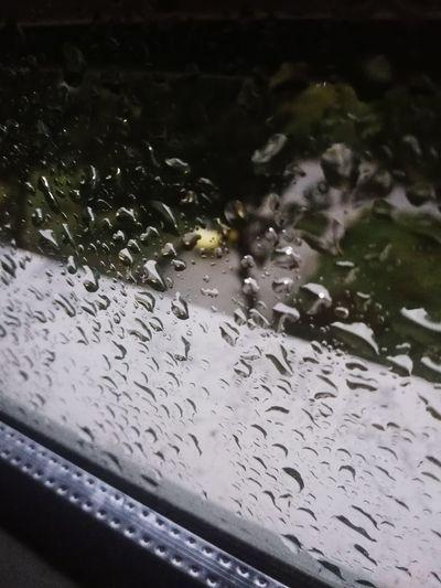 Water Wet Drop Close-up Rain RainDrop Rainfall