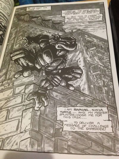 Original comic Art pages From Eastman and Laird Teenage Mutant Ninja Turtles ArtWork Comic Art Comic Book Comics Eastman And Laird Original Art Pencil Art Teenage Mutant Ninja Turtles  TMNT🐢