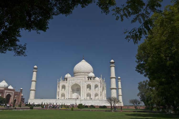 Architecture Clear Sky Cultures Day Dome Grass India Outdoors People Sky Taj Mahal Tomb Travel Destinations Tree