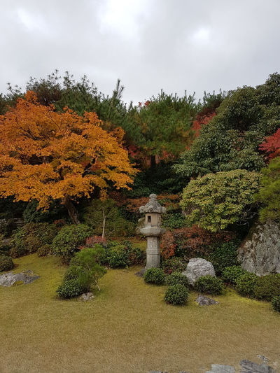 Plant Tree Sky Nature Change Growth Autumn Cloud - Sky Beauty In Nature No People Park Day Park - Man Made Space Tranquility Architecture Outdoors Built Structure Human Representation Scenics - Nature Formal Garden