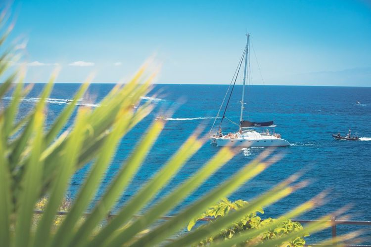 Paradise Water Sky Nature Sea Day Blue Beauty In Nature No People Scenics - Nature Transportation Sunlight Tranquil Scene Outdoors Nautical Vessel Mode Of Transportation Tranquility Sailboat Horizon Idyllic Horizon Over Water