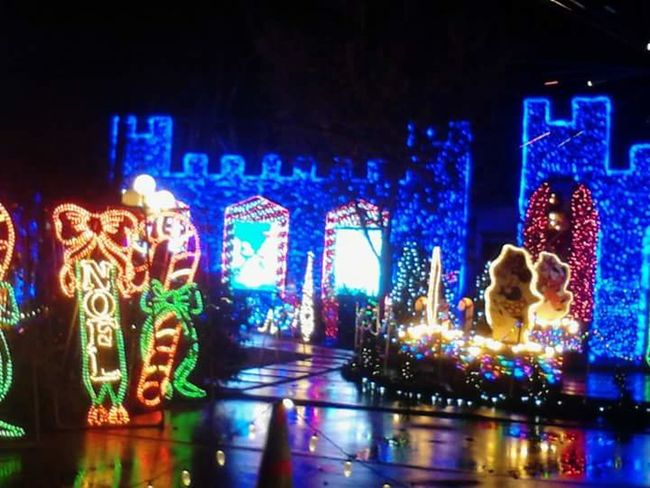 Best Christmas Lights