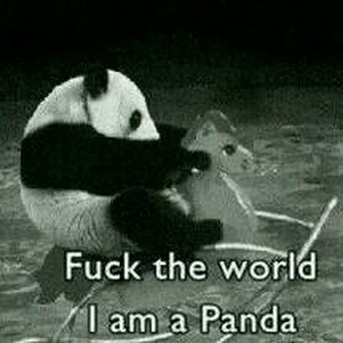 panda<3 that is all.