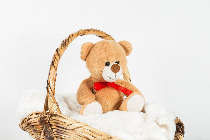 Baby Babies Only Basket Childhood Cute Day Doll For Children No People Stuffed Toy Teddy Bear Toy White Background