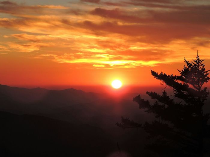 Smoky Sunset + Spruce Silhouette from Clingmans Dome in Great Smoky Mountains National Park. Tennessee Smoky Mountains Sunset From Clingmans Dome Hiking Hiking Adventures Orange Sunset Mountain Sunset Blue Ridge Mountains Appalachian Trail Space For Text