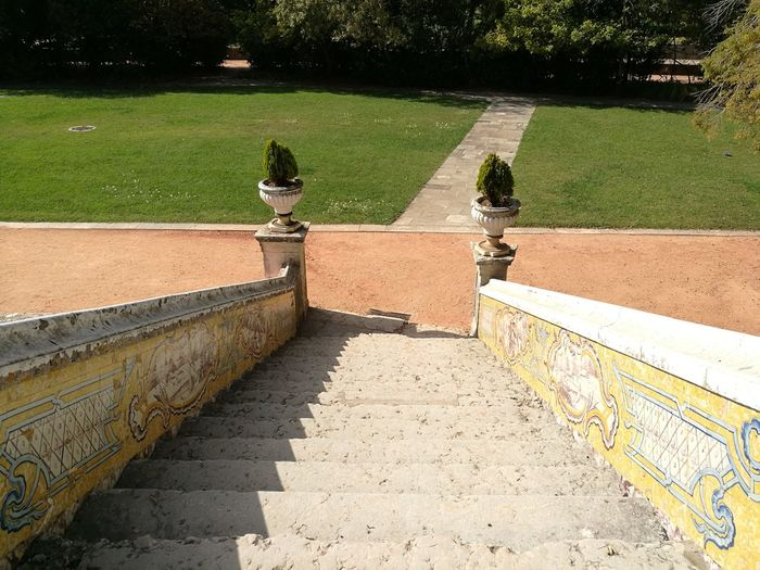 Grass Outdoors Nature Stairs Stairs Down Palace Old Buildings Old Stairs Old Palace Old Palace Stairs Azulejos Portugal