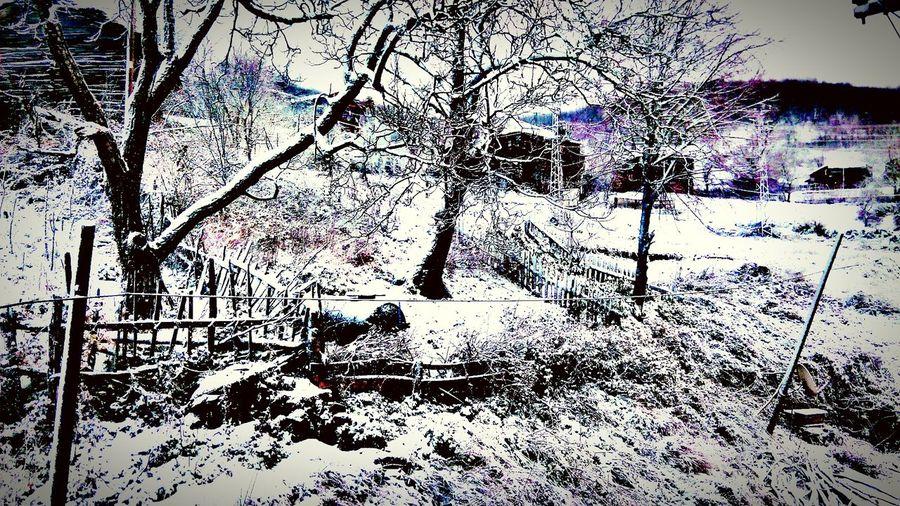 Kar Kış