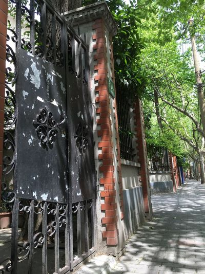 Hello Shanghai