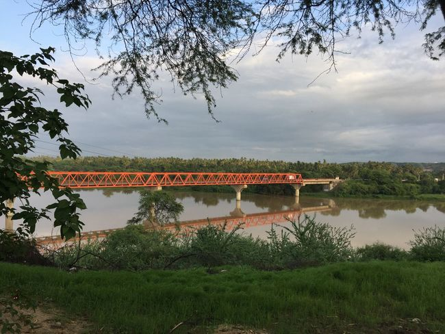Peru Landscape Nature Day Tree Summer Summer Views Going The Distance Know River Good Morning Marcavelica Beautiful Bridge