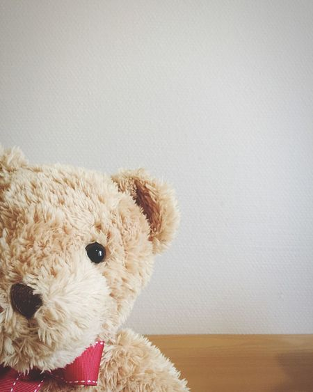 Cropped Image Of Teddy Bear Against Wall